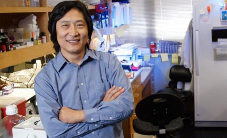 Songtao Shi Advancing Stem Cell Research