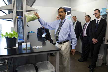 Dr. Henry Daniell explains his plant-based system for producing and delivering drugs to PA Senators touring his research greenhouse.