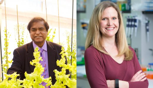 Faculty Innovation Honored at University-wide Event