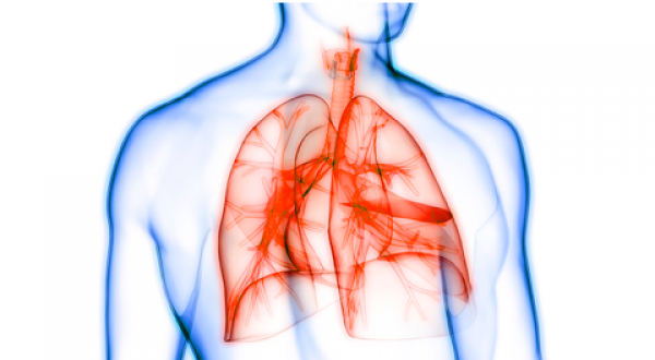 Advancing an Oral Drug for Pulmonary Arterial Hypertension